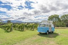 Narooma - Private Day Tour -  Ultimate Food and Wine Tour - VW Kombi
