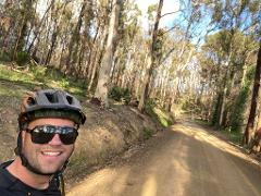 SELF GUIDED E-BIKE TOUR - PEDAL TO PRODUCE SERIES - WAGONGA WILDERNESS LOOP- 4 Hour E-Bike Hire with local produce picnic