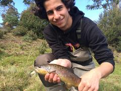 Beginners Fly Fishing Tour - Half Day(s)