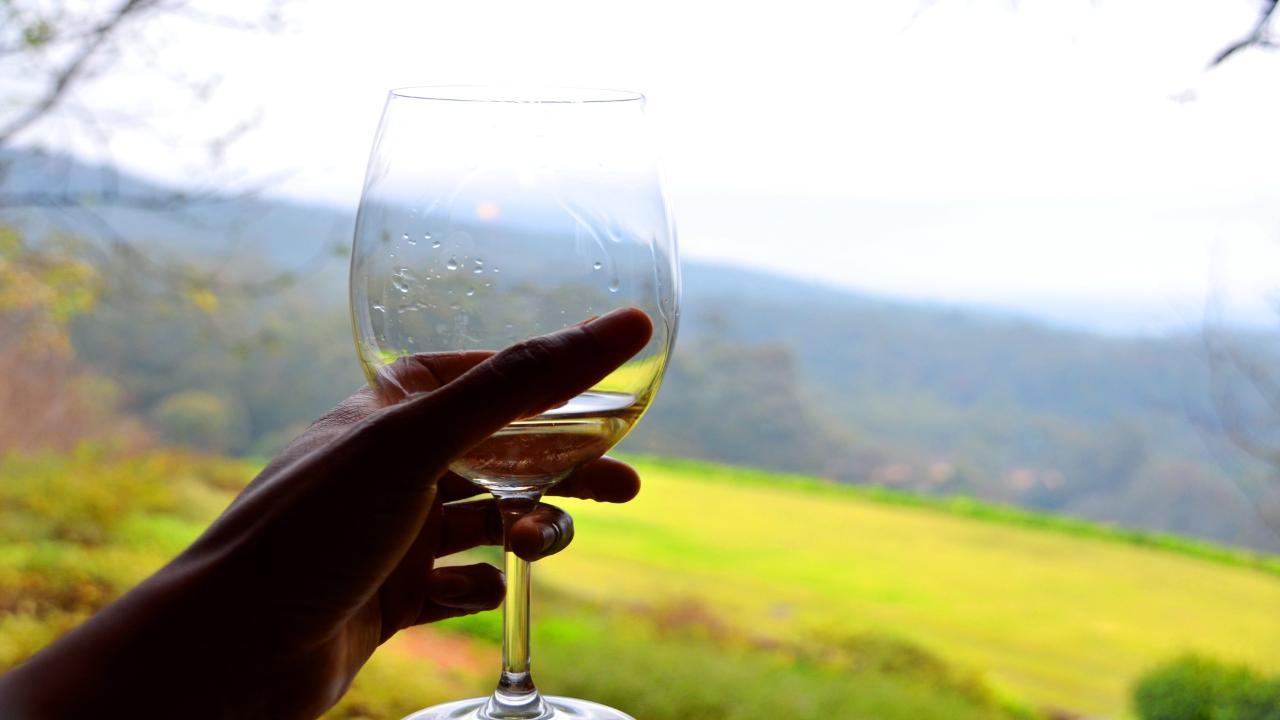 Horseback Wine tour