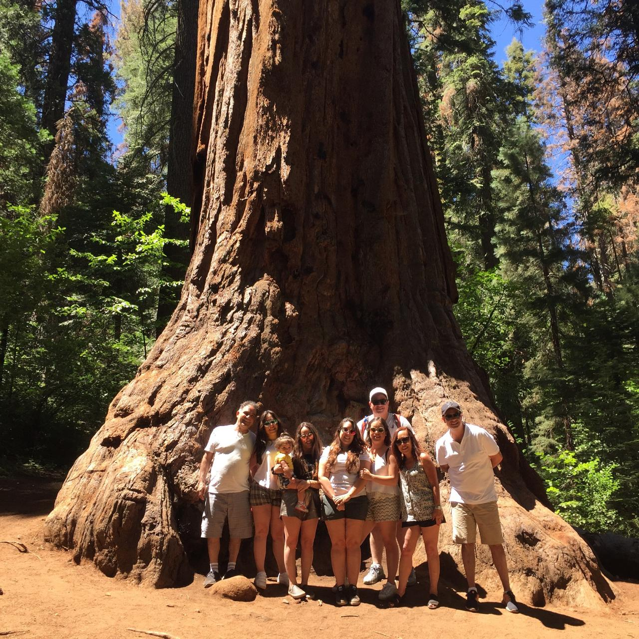 Giant Sequoia Private Jeep Tour
