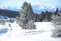 WHITE MOUNTAIN 2-HR PROSPECTOR TOUR, CHECK-IN 30 minutes before your tour time AT THE TURQUOISE LAKE RIDING AREA AT 1668 COUNTY ROAD 99, LEADVILLE, CO.80461