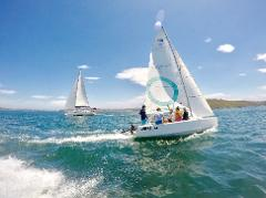 Australian Sailing Step 1B- Start Helming