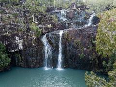 Rainforest & Waterfalls