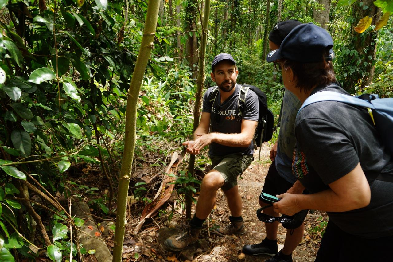 Private Guided Bushwalking Tour