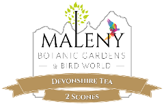 Gift Card E-Voucher - $11 (Devonshire Tea - 2 Scones)