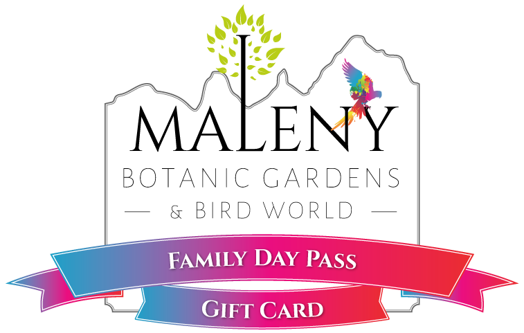 Gift Card E-Voucher - $89 (Family Day Pass)
