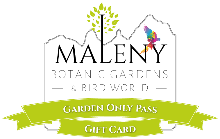 Gift Card E-Voucher - $28 (Buggy Hire 4 Seater - 1 hour)