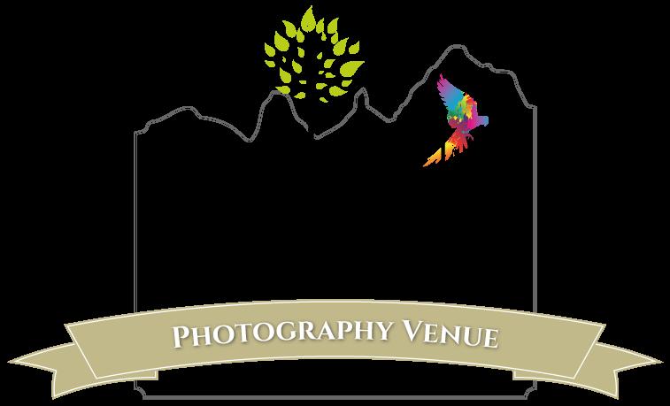 Garden Photography Venue