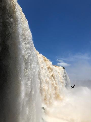 Rio & Iguasu Falls