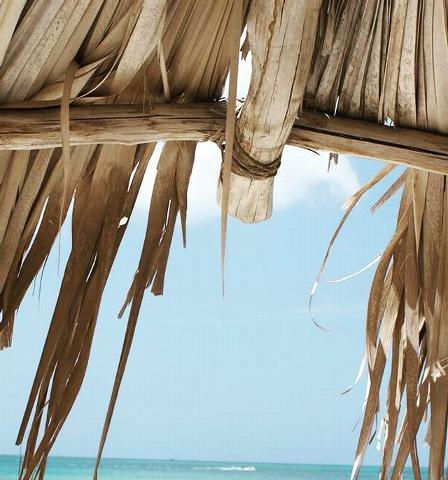 1/2 Day Private Beach Hut