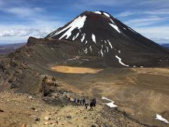 Tongariro Alpine Crossing / National Park Village Return