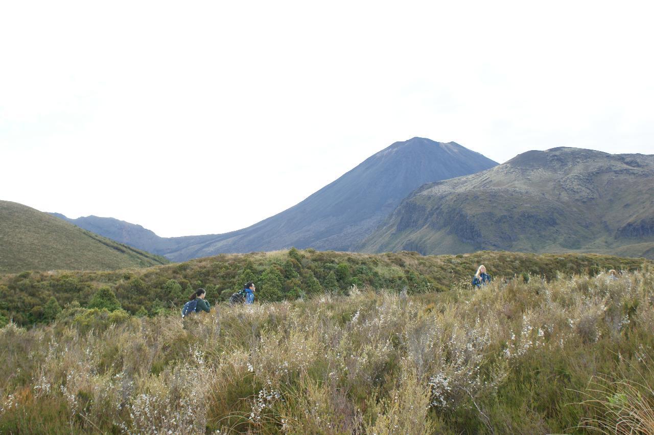 Tongariro Alpine Crossing / Whakapapa Return