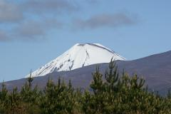 Tongariro Alpine Crossing / National Park Village Return