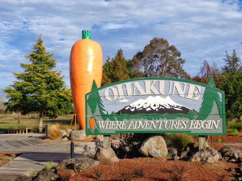 Owhango/National Park - Ohakune