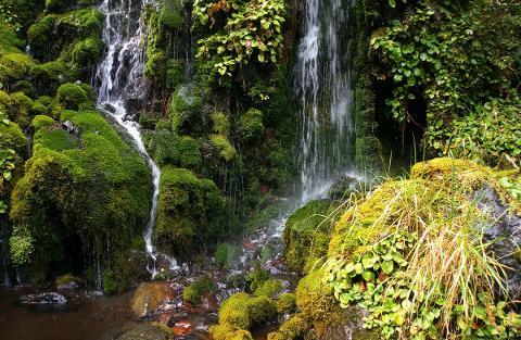 waitonga_falls_1200