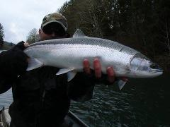 Oregon Coast Winter Steelhead Trips