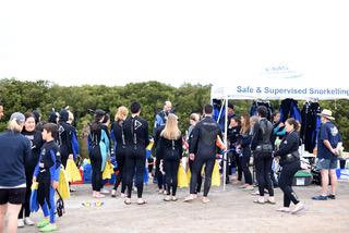 Port Gawler Mangrove Forest Snorkel Tour