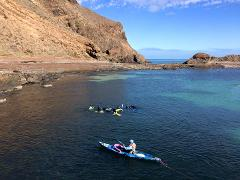 Blue Devil Snorkel, Second Valley Jetty - for beginners & all abilities