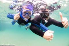 Snorkel Hallett Cove Beach and Reef with support of City of Marion