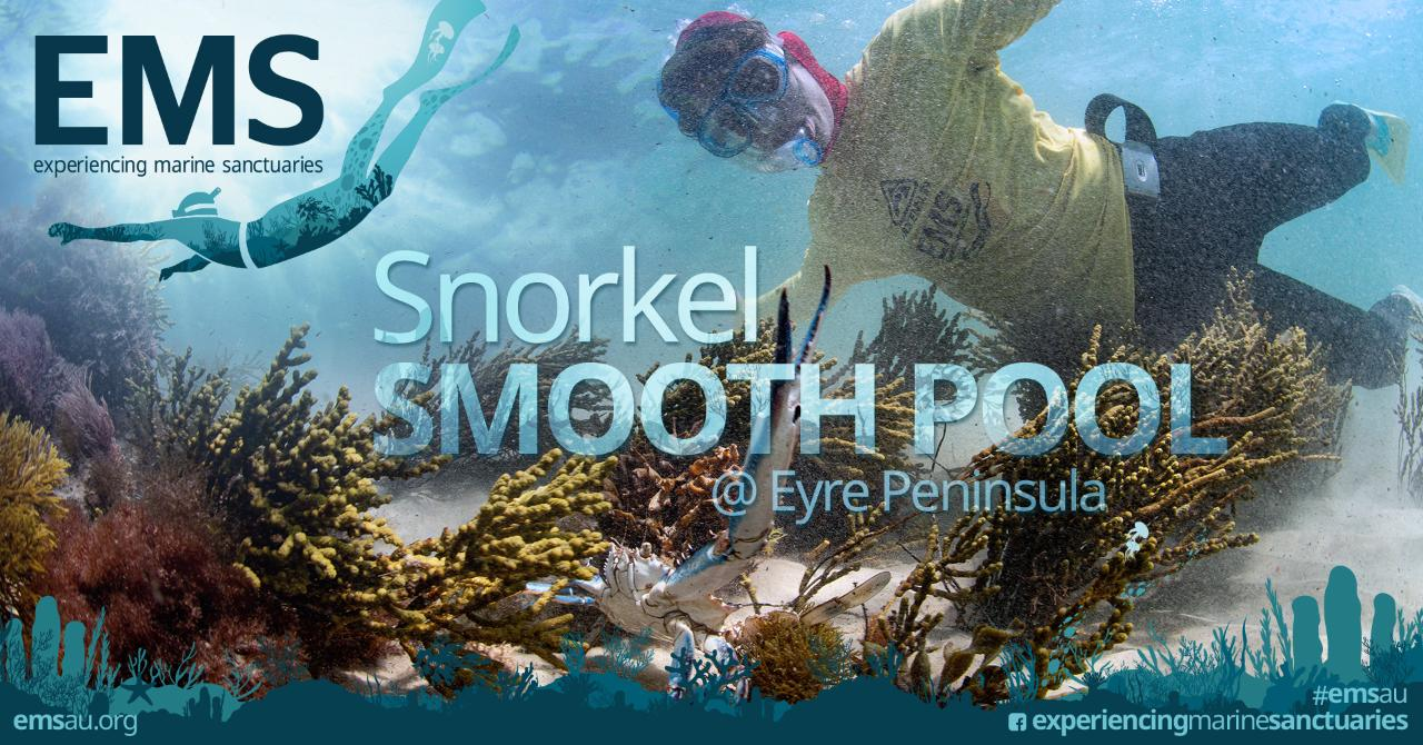 Snorkel Smooth Pool near Streaky Bay on Eyre Peninsula