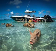 Exuma Cays Adventure
