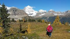 Mount Assiniboine Hiking - 4 Days/3 Nights