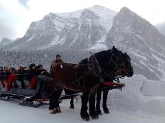 Lake Louise Winterland Tour