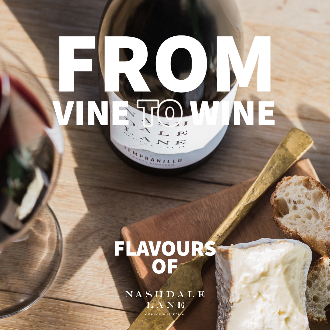 From Vine to Wine : Flavours of Nashdale Lane Wine Festival Event