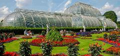 Visit Kew Gardens & See 30+ London Top Sights