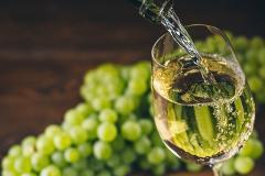 Burgundy Wine Day Trip