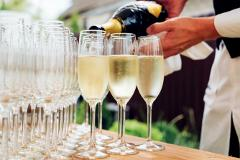 Champagne Day Trip (SUPERIOR)