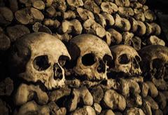 Paris Catacombs Skip The Line