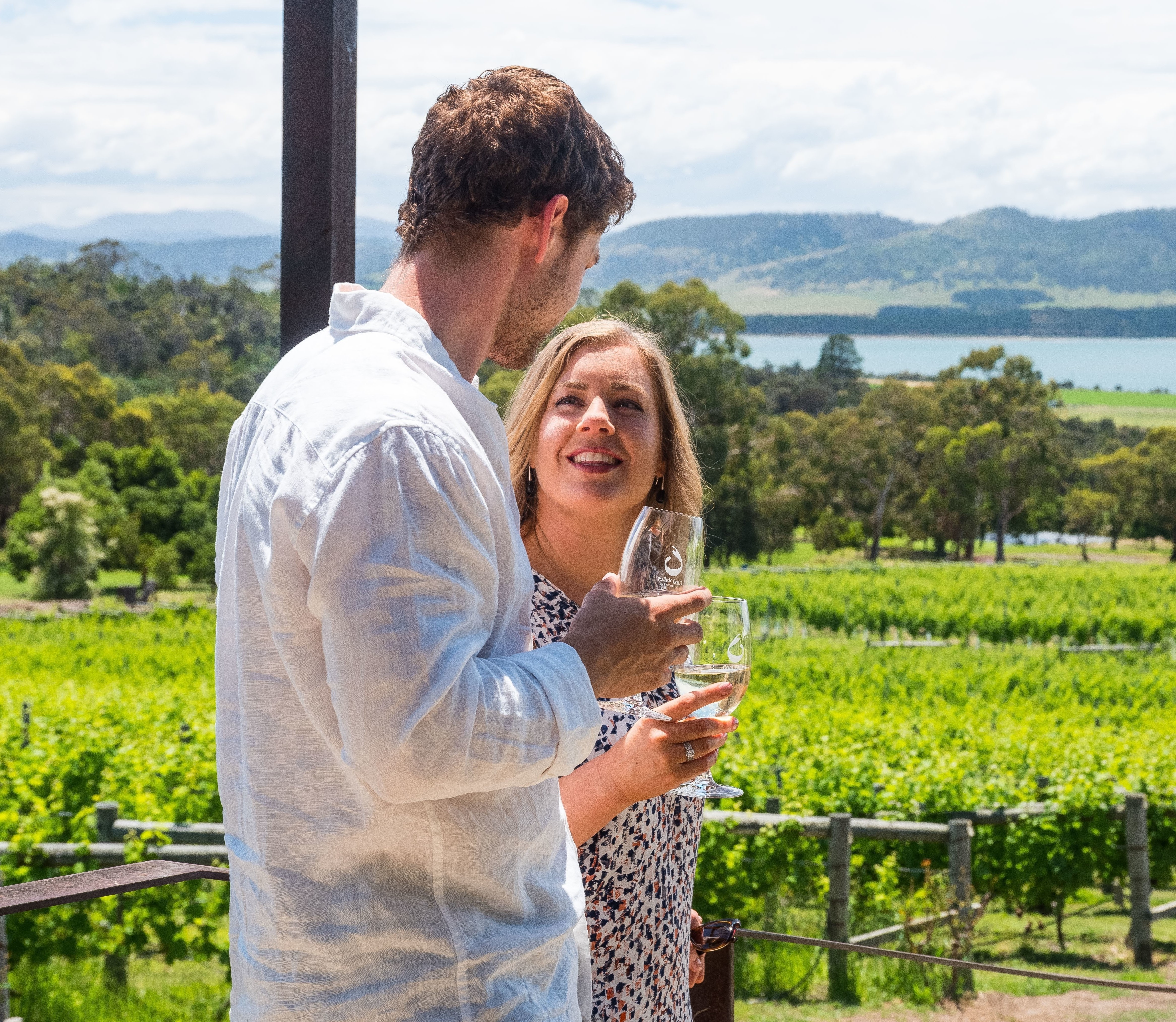 Hobart Wine Tour: Thursday Afternoon (Coal River Valley) Wine, Cheese & Gins
