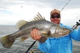 1 DAY FISHING - Fishing Nile Perch on Lake Victoria Uganda - BIC