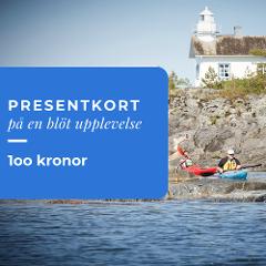 Presentkort 100 kronor