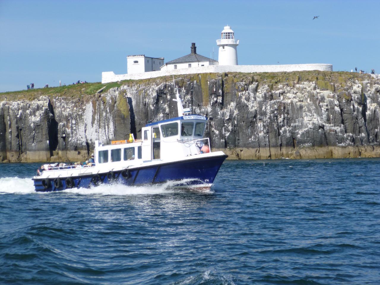Inner Farne Boat Trip