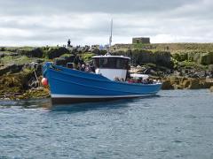 Staple Island Boat trip