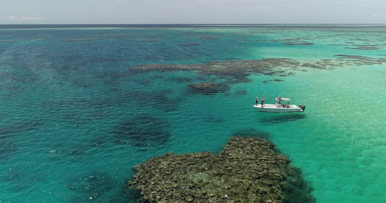 Port Douglas Offshore - Full Day