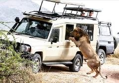 3 Days Budget Lodge Safari Tour Tanzania 1,200 usd