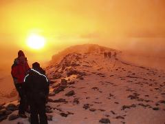8 Days Mt. Kilimanjaro Climbing - Lemosho Route