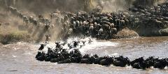 8 Days Budget Lodge Safari Tour Tanzania