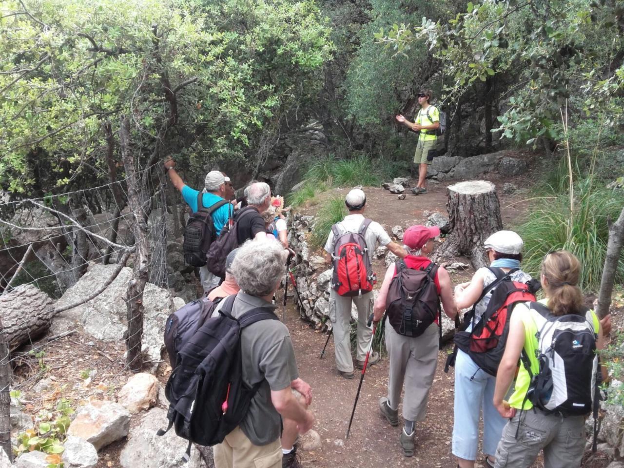 Trekking Medium level -