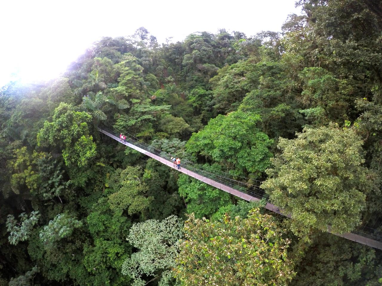Hanging Bridges and Pure Trek Canyoning