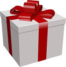 Adventure Zip Lines Gift Certificate