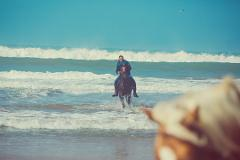 Horseback Riding: EL GHANDOURI - Tangier - 2 hours