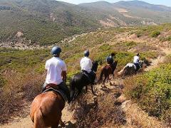 Horseback Riding: AGUENOUANE - Tangier - 5 Hours