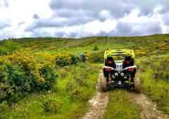 Buggy Excursion: MNAR Hills - Tangier - 1 hour