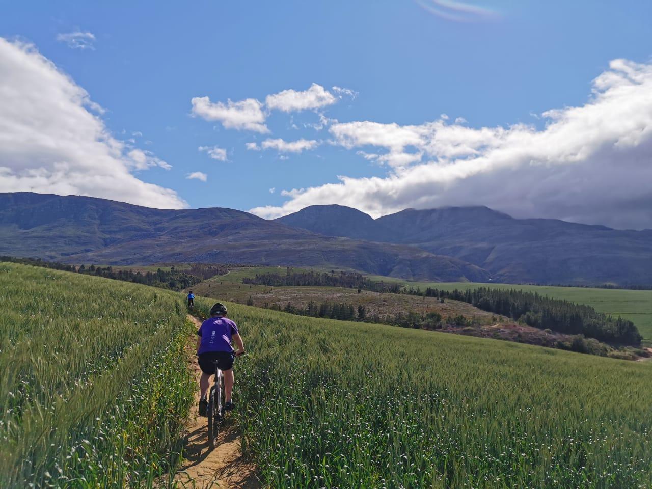 Full Day:  Mountain Bike Rental