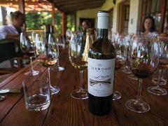 4x4 Wine Tasting - Elgin Valley East